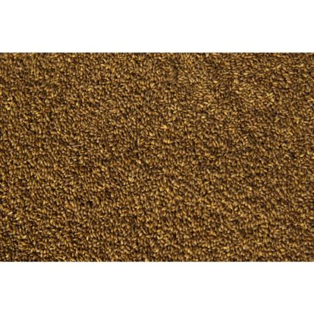 BL161311 FONIO -Power Seeds- 400g