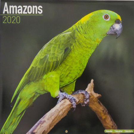 Kalender Amazonen  2020