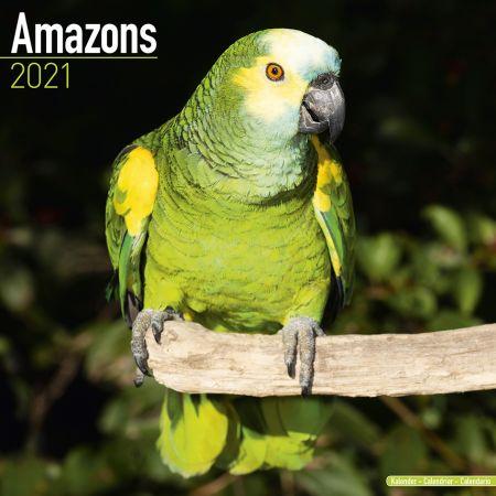 Kalender Amazonen  2021