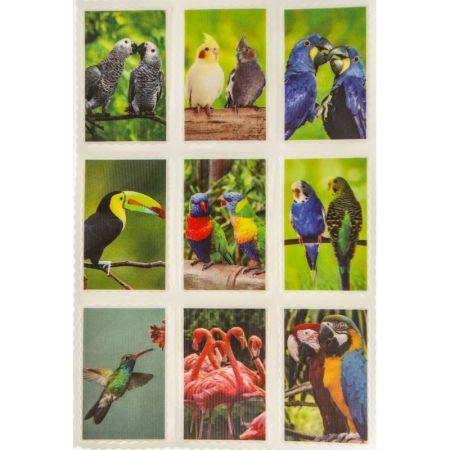 Sticker 3D tropische Vögel