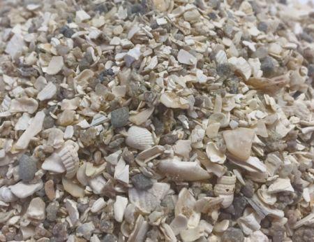 Muschelgrit  grob 1 kg   WM11