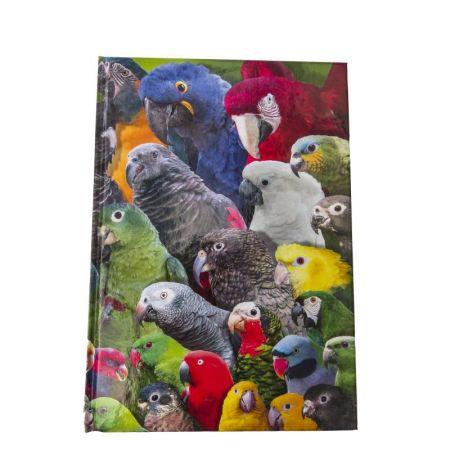 Notizblock bunte Papageien Arndt Verlag DIN A 5 Seiten unliniert 60858