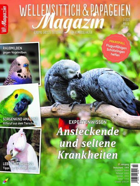WP - Magazin